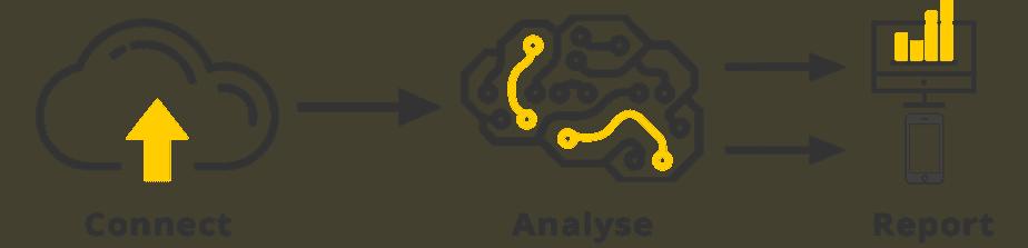 analyze brayn network